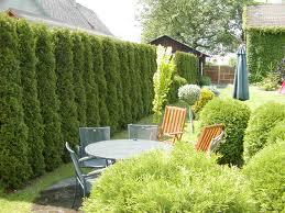 Příklad využití živého plotu s posezením